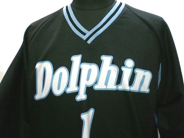 Dolphin 様